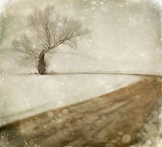 There for Ages… by Jamie Heiden
