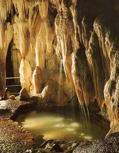 España cuenta con una gran cantidad de cuevas y grutas que son perfectas para visitar con niños y que conozcan la historia del país a través de un mundo subterr