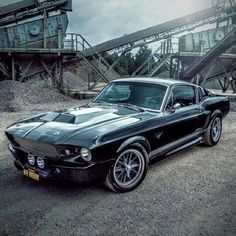 Ford Mustang the Beast