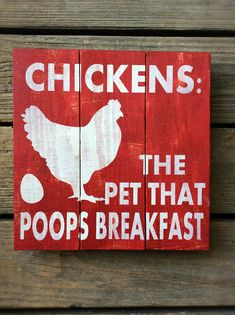 Chickens the Pet that Poops Breakfast Chicken Chicken Coop