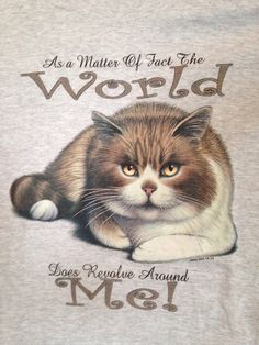 Cat T Shirt Fun kitty t shirt-As a Matter by aBetterTomorrowSales