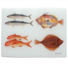 Buy Online-Jersey Pottery Fruits de Mer surface protector with Richard Bramble original paintings