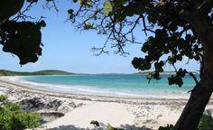 8 playas escondidas para visitar en Puerto Rico.  8 hidden beaches in Puerto Rico.