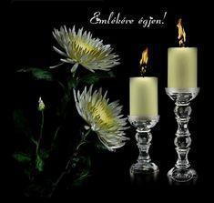 Gyertyaláng.hu | Szabó Gábor - Szöcske oldala Yellow Candles, Pillar Candles, Tea Lights, Flowers, Tea Light Candles, Royal Icing Flowers, Flower, Florals, Candles