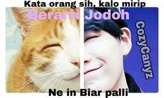 Bts Facts, Bts Meme Faces, Bts Memes Hilarious, Kpop, About Bts, Daegu, Bts Suga, Army, Jokes