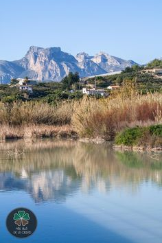 Más allá de la ciudad: Ruta por la desembocadura del río Algar (Altea)