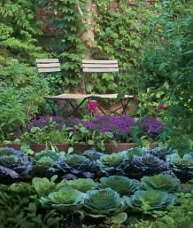 Who says a kitchen garden can't be beautiful? | Fine Gardening