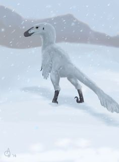 Troodon in the snow