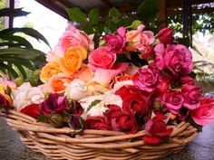 Roses picked from our country garden Summer of 2010