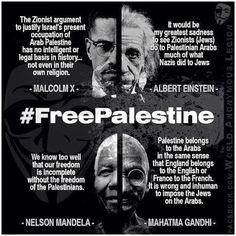 Palestine Gandhi Einstein Malcolm X Nelson Mandela Elie Wiesel, Malcolm X, Mahatma Gandhi, Nelson Mandela, Israel Palestine, Palestine Quotes, Oppression, Albert Einstein, Equality