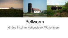 25849 Pellworm, #nordsee Pellworm - grüne Insel zwischen Ebbe und Flut - #urlaub