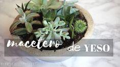 macetero de yeso con suculentas Diy Planters, Plaster, The Creator, Diy And Crafts, Succulents, Youtube, Terracotta Pots, Modeling Paste, Craft Tutorials