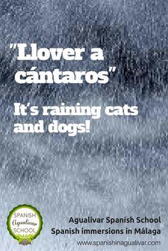 """llover a cántaros"", #expresiones #español, #lluvia #agualivar #spanish #immersion"
