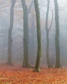Otley, England by jasontheaker