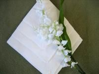 Learn How To Fold Cotton and Linen Napkins  WHOLE SITE FULL!!!!