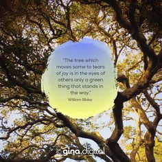 """""""The tree which moves some to tears of joy is in the eyes of others only a green thing that stands in the way."""" William Blake #ginadigital #tree #williamblake"""