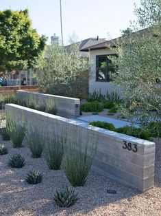 Curb Appeal: Drought Tolerant Front Entrance Ranch House With Contemporary Entrance, Low-Water Garden appeal Bushes appeal Door appeal Farmhouse Landscape Lighting Design, Landscape Design Plans, Landscape Architecture Design, Landscape Walls, House Landscape, Modern Front Yard, Front Yard Design, Design Cour, Garden Wall Designs