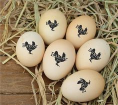 You are buying 1 unit of personalized Handle mounted rubber stamp. Please view the picture for clear options choice. Measurements The imprint size for this Handle mounted stamp will be fitted into approx:- Approx x ( x - Suitable to Keeping Chickens, Raising Chickens, Chicken Coop Designs, Chicken Coops, Farm Chicken, Chicken Feeders, Chicken Garden, Chicken Houses, Egg Stamp