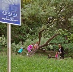 bardzo naturalny plac zabaw w Krakowie:  Zestaw Wspinaczkowy