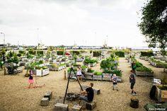 Fredericia C - Landscape Strategy