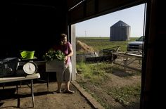 Local organic farming http://bit.ly/KW7eNR