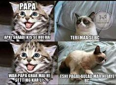Bewakuf awlad Funny Pics, Funny Stuff, Funny Pictures, Funny Memes, Hilarious, Jokes, Desi, Lol, Board