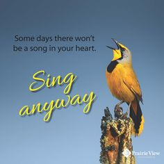 """""""Some days there won't be a song in your heart. Sing anyway."""""""