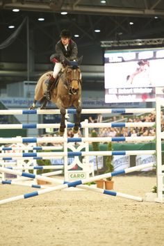 How can the horse jump that high & probably another coming right up in this show jumping contest.