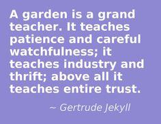 a garden...