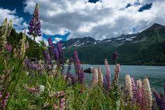 lago di Ceresole by Artur Dudka on 500px