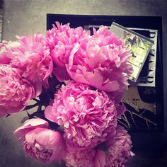 Pink peonies - WhatWouldGwynethDo