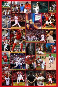 My Yadier Molina Collage