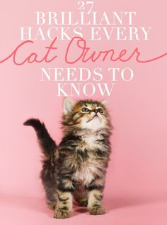 https://www.buzzfeed.com/elainawahl/27-brilliant-hacks-every-cat-owner-needs-to-know?utm_term=.lq3mdyVML&utm_content=buffer34254&utm_medium=social&utm_source=pinterest.com&utm_campaign=buffer#.yg59VQwW8