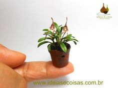 mini orchid Dracula simia (monkey-face) - handmade in clay cold porcelain