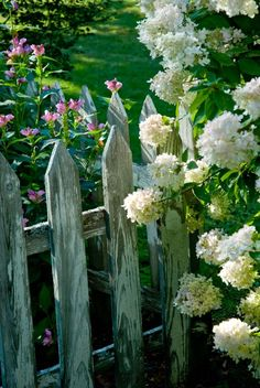 Low fencing defines space and lends structure to perennials.