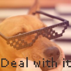 """DEAL WITH IT These are the 3D printed version of the classic meme """"deal with it""""-glasses. Make awesome stop motion video with them, be coolest on the block or just enjoy your new shades!"""
