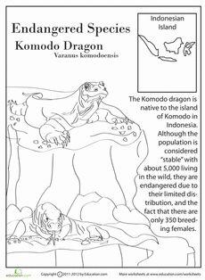 printable komodo dragon coloring page free pdf download at. Black Bedroom Furniture Sets. Home Design Ideas