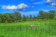 Pipestone National Monument...Minnesota...photo by Cyn...June 15' 2014