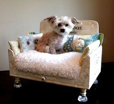 Pet Loungers |
