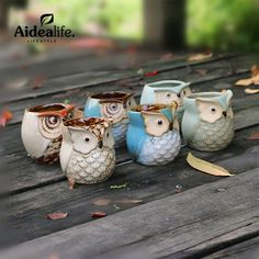 mini flower pot planters for succulents home and garden home decor ceramic owl planter cute flower pot sprouting trays