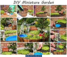 Click photo for A Step-by-Step DIY guide to build your own Miniature Fairy Garden