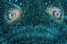 'Stargazer' - STARGAZER in Blue Heron Bridge, Florida  -  ©Keri Wilk/Barcroft Media, guardian.co.uk