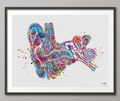 Ear Anatomy Watercolor Print Audiologist Gift Audiology Poster