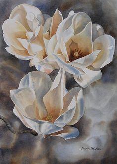 Three White Magnolias Print By Sharon Freeman