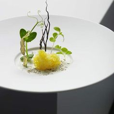 Springtime starter by @christian.juergens (3 Michelin) posted via #ChefsTalk app - join us to find out more of this chef. www.chefstalk.com by chefstalk