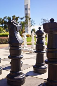 See why the locals love living in Palmerston North city and Manawatu. Free Things To Do, Chess, The Locals, Fountain, City, Outdoor Decor, Water Fountains, Cities, City Drawing