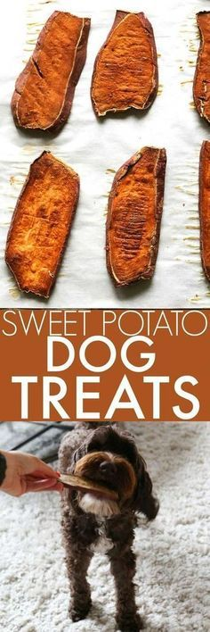Sweet Potato Dog Chews only use one-ingredient to make a healthy, homemade dog treat for your favorite pet! DIY dog treats are a great gift too! Puppy Treats, Diy Dog Treats, Homemade Dog Treats, Dog Treat Recipes, Healthy Dog Treats, Dog Food Recipes, Healthy Snacks, Food Tips, Diy Dog Gifts