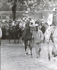 Secretariat, Ron Turcotte, and Eddie Sweat.....Belmont