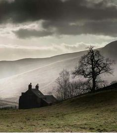 A secluded cottage in the Scottish Highlands shrouded in eery mist. This looks like the perfect setting for a Jane Austin novel!