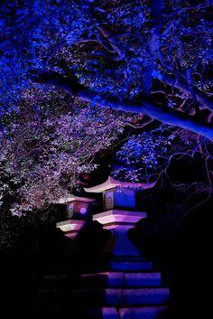 Stone Lantern of Kasuga Nara  Japan